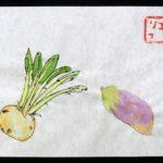 野菜の写生